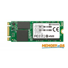 SSD M.2 Type 2260 512GB (TS512GMTS600)